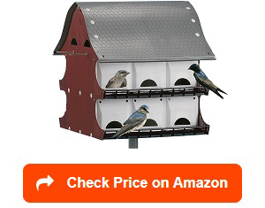 16-Family-Purple-Martin-Barn