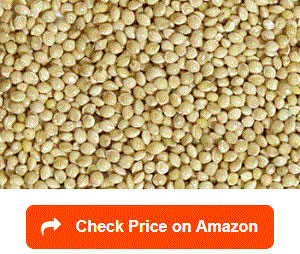 Shafer-Seed-84075-White-Proso-Millet-Wild-Bird-Food