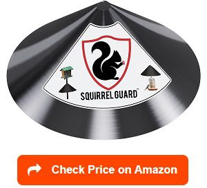 Squirrel-Guard-Baffle-Protects-Hanging-Bird-Feeders