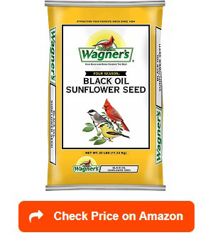 Wagner's-76027-Black-Oil-Sunflower-Seed