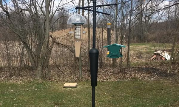 bird-feeder-pole-with-squirrel-baffle
