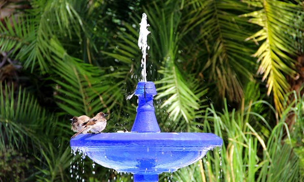solar-powered-bird-bath-fountain-kit
