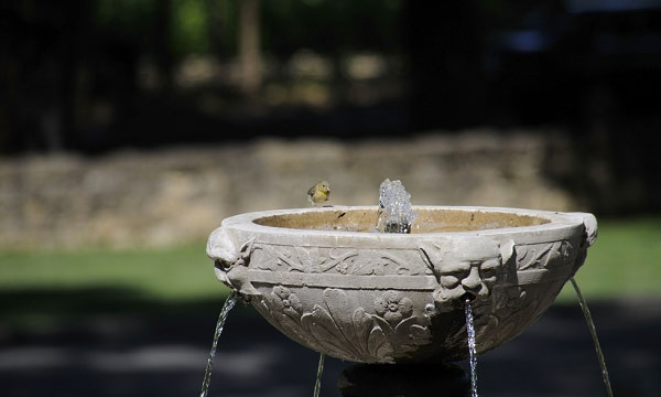 solar-powered-bird-bath-fountain