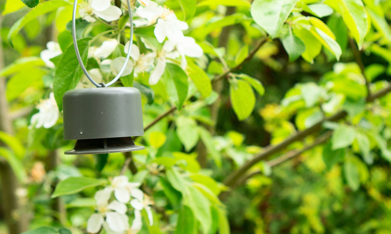 best ultrasonic bird repeller