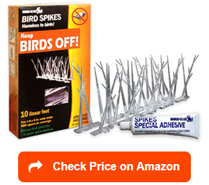 bird x plastic polycarbonate bird spikes