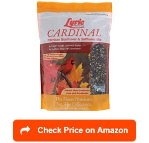 lyric 2647467 cardinal premium