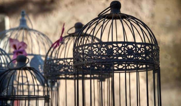 best-bird-cage-brands