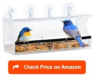 entirely zen window bird feeder