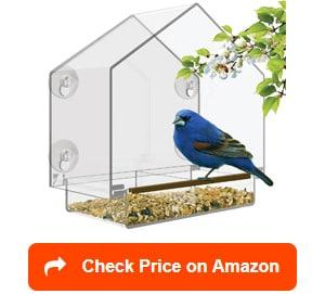 nature's hangout large window bird feeder