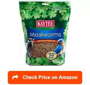 Kaytee-Mealworms
