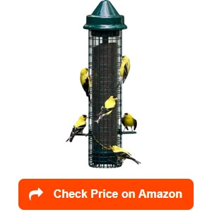 brome squirrel buster finch bird feeders